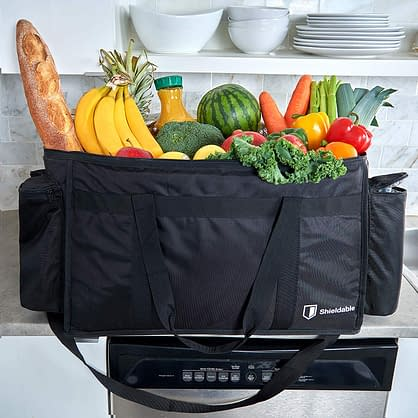 Food warmer Ice cooler bag under $50