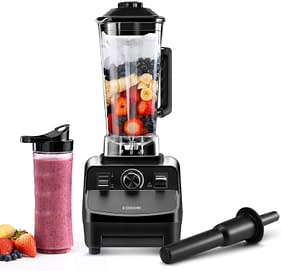 Heavy duty Professional blender for frozen fruit and with travel bottle